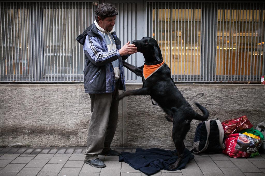 Hajléktalan emberek és kutyáik