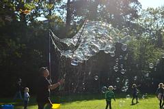sun & bubbles