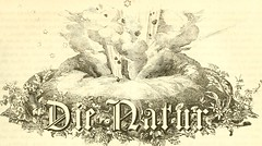 "Image from page 138 of ""Die Natur"" (1852)"