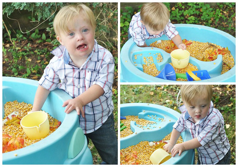 Water Table filled with corn