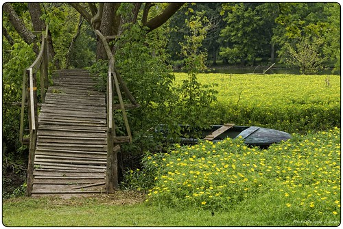 Paysages du Béarn en été