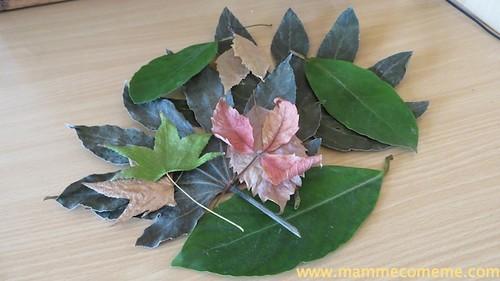 foglie2_new