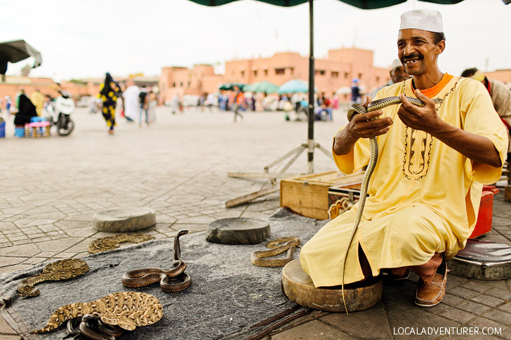 The Snake Charmers at Place Jemaa El Fna Marrakech Morocco.