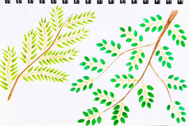 little branches with green leaves