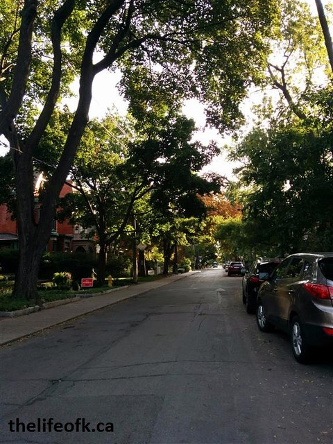 Toronto Trip Street