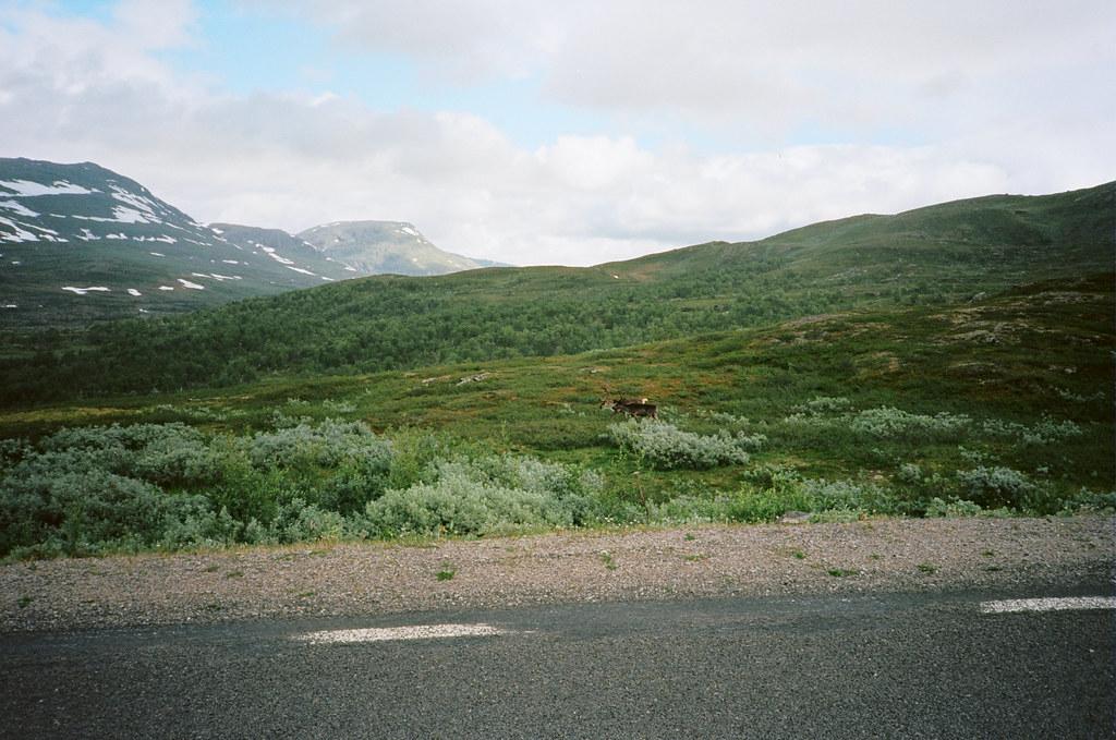 Engeløya to Angelniemi
