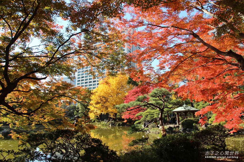 東京賞楓-日比谷公園36