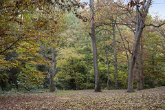 Rock Creek Park (55)