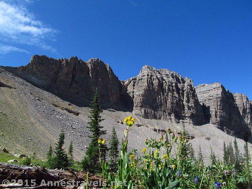 Cliffs at the upper end of Darby Canyon, Jedediah Smith Wilderness Area, West Side of the Tetons, Wyoming