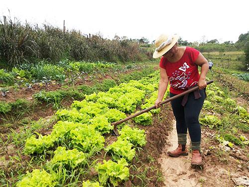 A assentada Marli Lopes Pereira conta que a sua opção por orgânicos se deu pela conscientização de que é preciso preservar o meio ambiente e propiciar à população uma vida mais saudável!.jpg