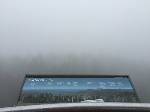 Clingman's Dome hike 2