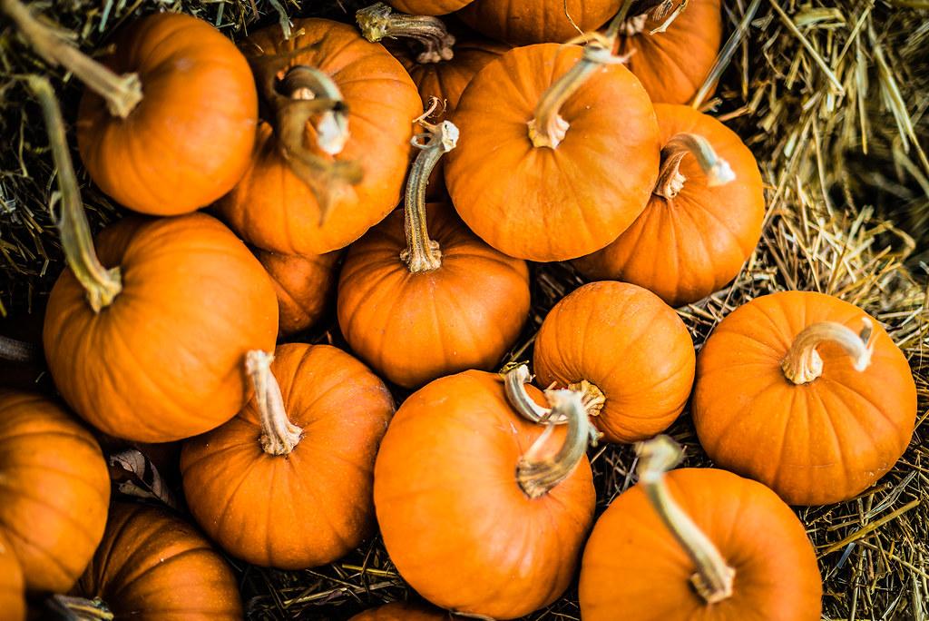 pumpkin spill