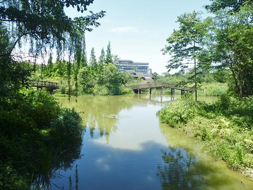 CH-Chengdu-Parc-Huanhuaxi (5)