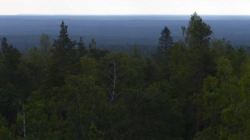 morning summer finland landscape geotagged nationalpark july fin 2015 kauhajoki eteläpohjanmaa isojoki lauhanvuori 201507 lauhanvuorenkansallispuisto lauhanvuorinationalpark 20150704 geo:lat=6215279515 geo:lon=2217397213