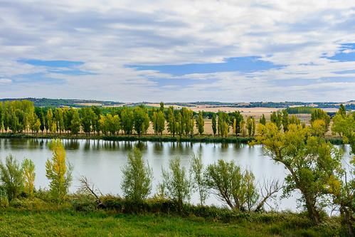 Reserva Natural Riberas de Castronuño - Vega del Duero