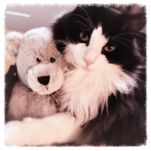 December 16 - Cuddly