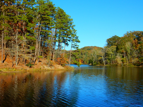 blueskyatvesuvius rickchilders rcvernors trees lake reflection forest waynenationalforest ohio lawrencecountyohio oh pines blueskies