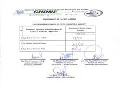 Calificaciones de entrevistas, para el puesto de Promotor de Ambiente