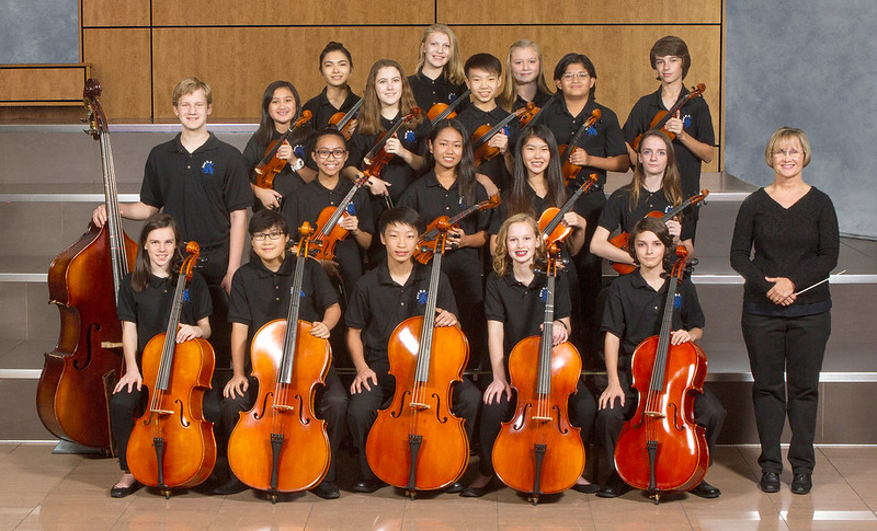 FMS Chamber Orchestra 2016-17