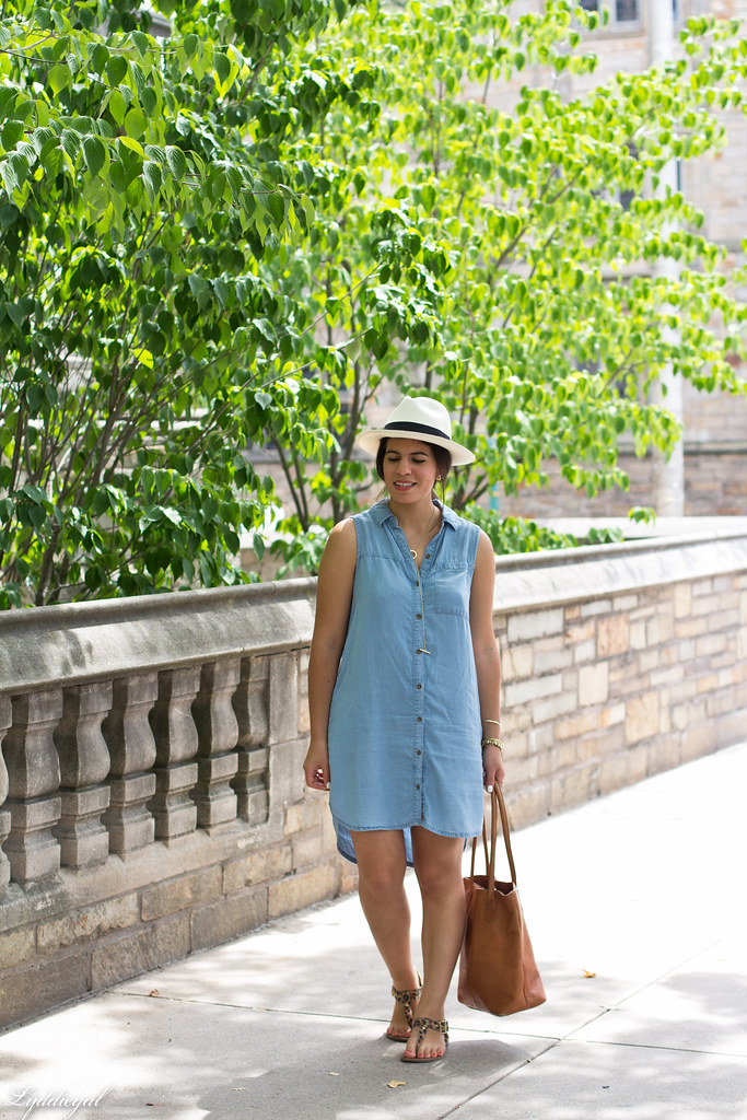 chambray dress, panama hat, leather tote.jpg
