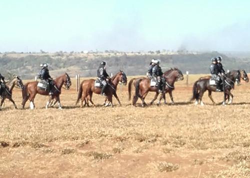 cavalaria.jpg