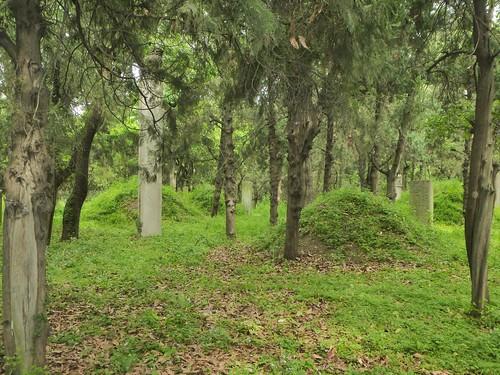 CH-Qufu-Confucius-Cimetière-Parc (3)