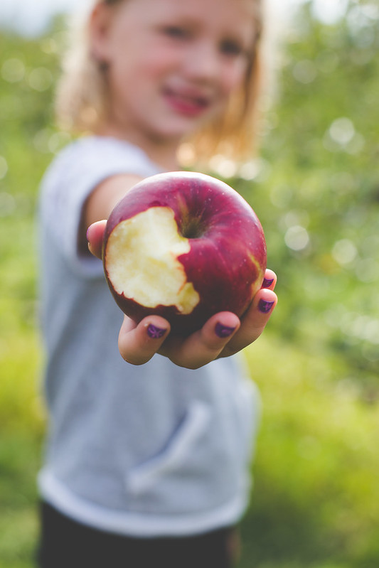 apple orchard (21)