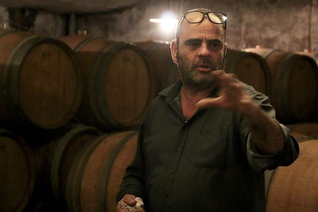 Goriška Brda (KABAJ winery)