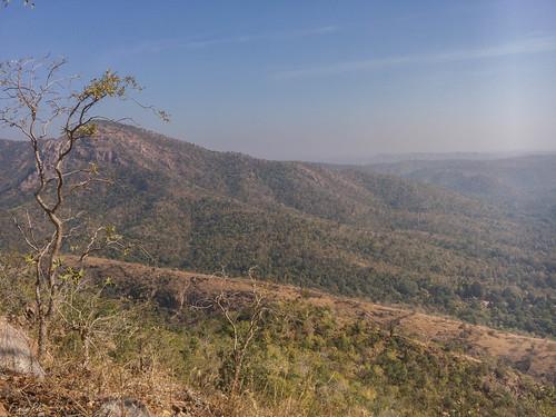 india hill polo gujarat reserveforest bandhana sabarkantha bimakhed