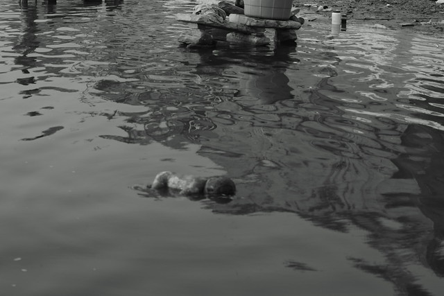 Corpse of a baby drifting on the Ganges. Varanasi (India). 27 Dec 2015