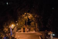 Πρωτοχρονιά Ψίνθος 2016