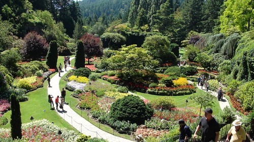 Victoria - The Butchart Gardens  ( 20/07/2015)