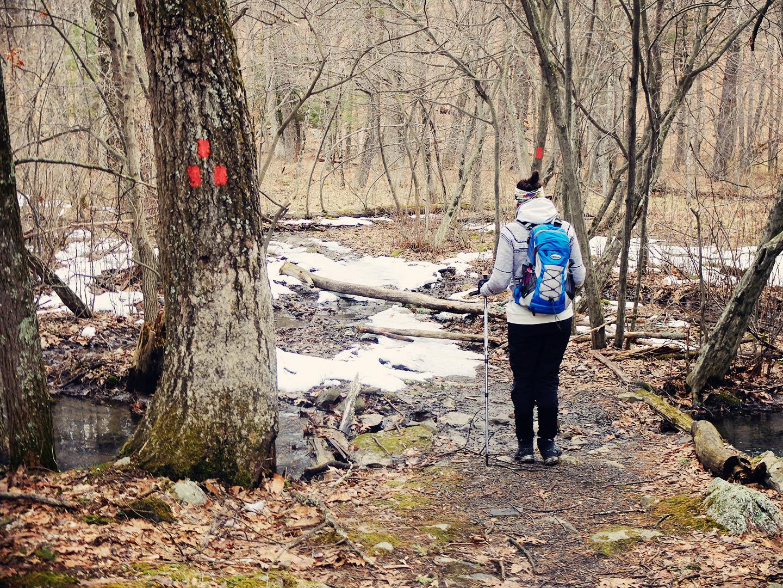 Bonticou Crag usa hike