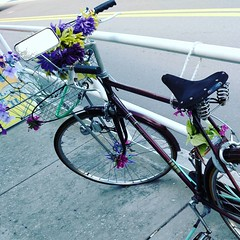 Objects in mirror are closer than they appear.   #Florida #Lovely #Bikes #Decorated #Flowers