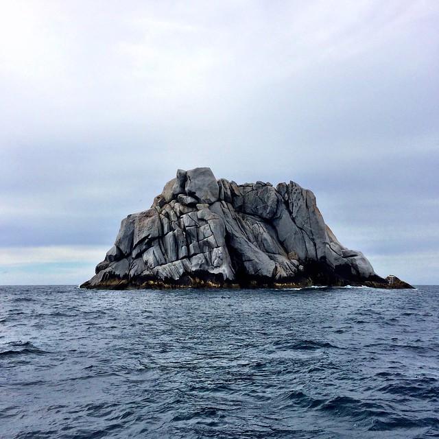 A large rock. Bass Strait.