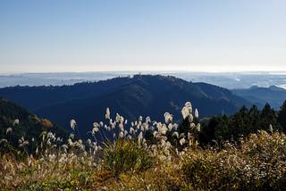 高尾山を眺める@城山