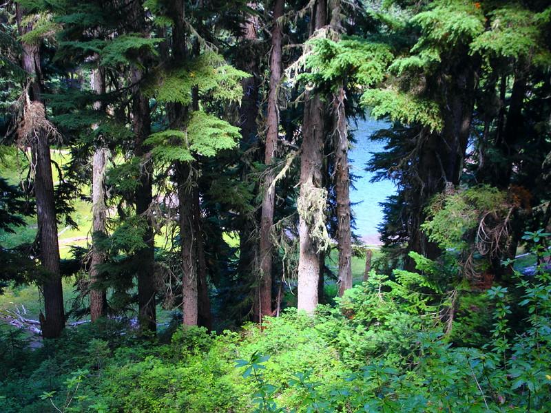 IMG_6196 Palisades Lakes Trail