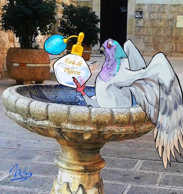 Noicattaro. Vignetta fontana Immacolata front