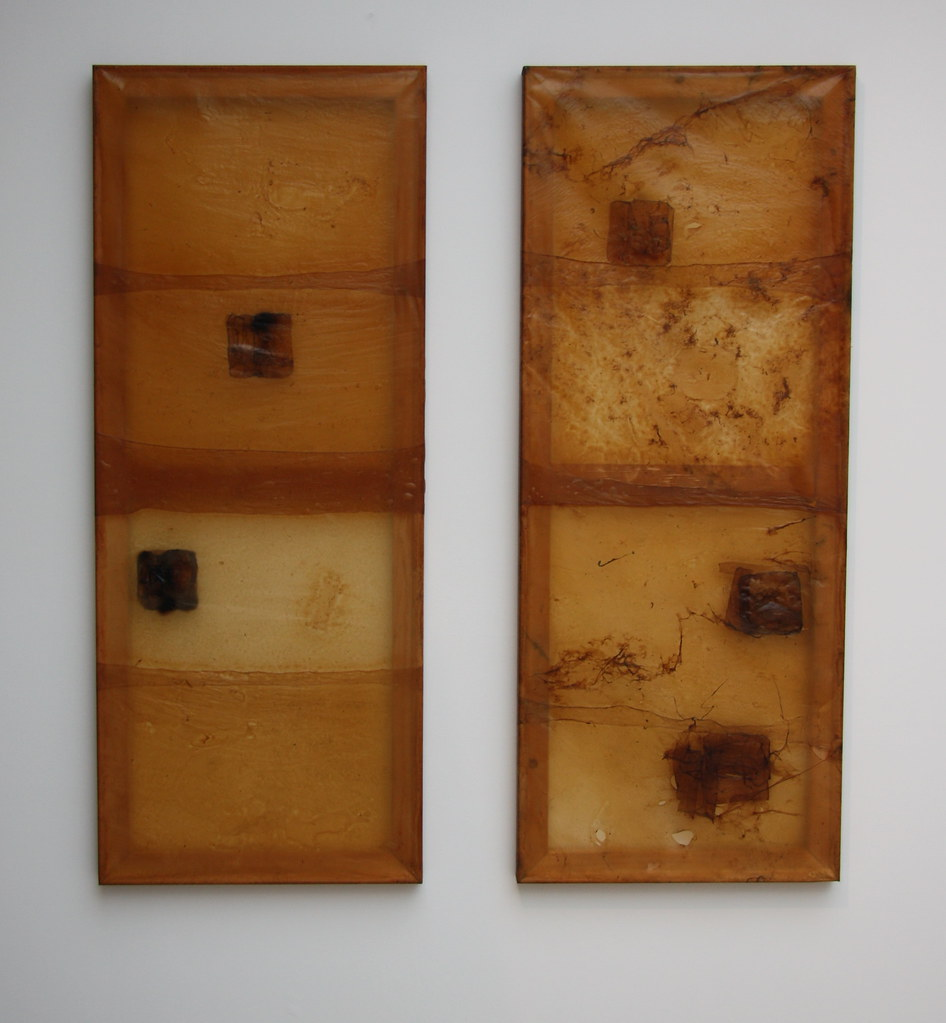 'Mother and Daughter' (2015) symbiotic colony of bacteria and yeasts, each 60x150cm