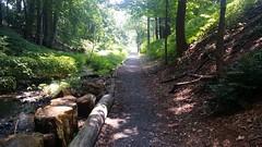 Rail to Trail 2