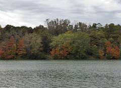 Silver Springs State Park 2015