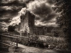 Ross castle,  Killarney National Park