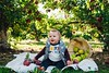I can't even handle these. Cuteness overload! Happy 9 months baby Hunter and fam! ©Jessica Anderson http://ift.tt/1jMU2Zm #NX1 #Imagelogger #DitchTheDSLR #Photography #AppleOrchard #FallFamilyPhotos