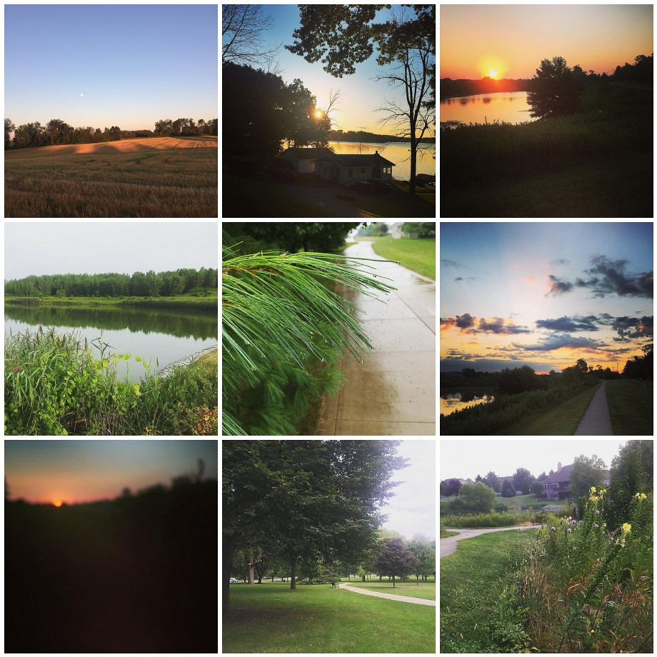 Along My Run - August 2015