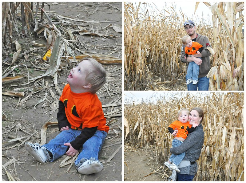 Liam in corn maze