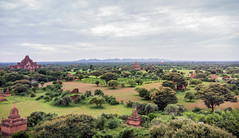 Bagan as Seen from the top of Shwesandaw Pagoda