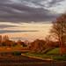 Autumn morning light by BraCom (Bram)