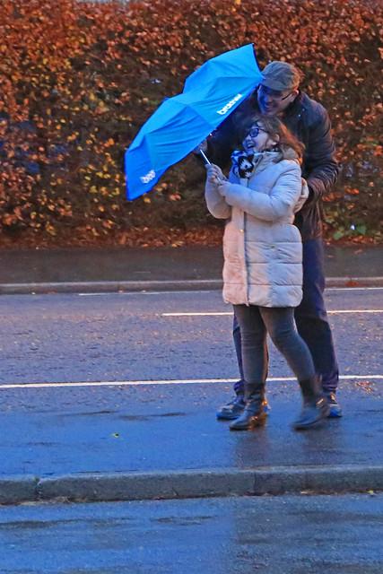 #3 Rainy November Day