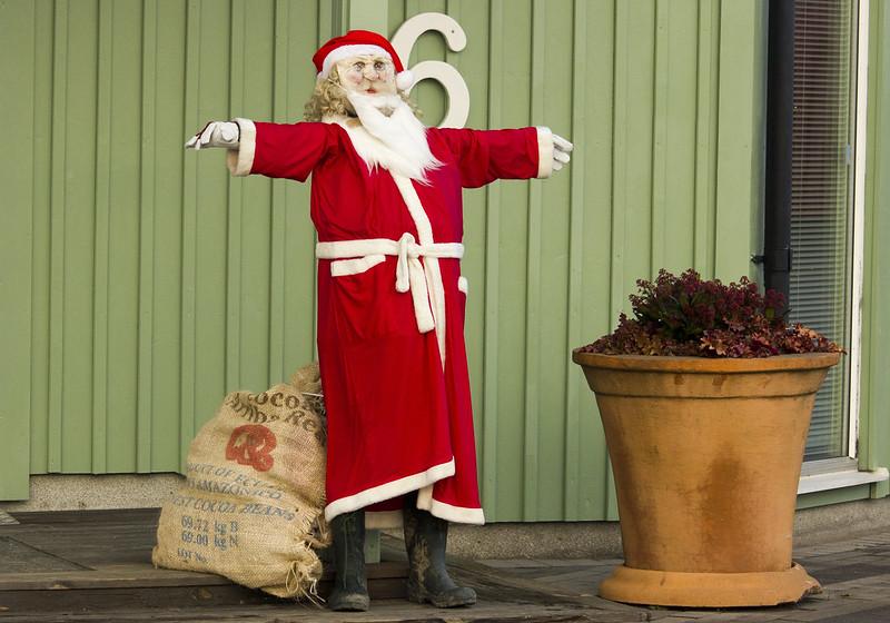 Toned Arms Santa