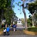 Acceso al Parque Nacional, c.1, av. 17/ Main entrance to the